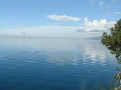 トリエステの海